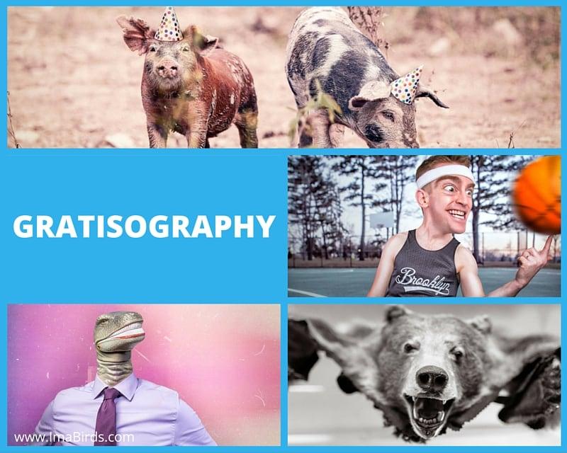Coole kostenlose Bilder-Datenbank