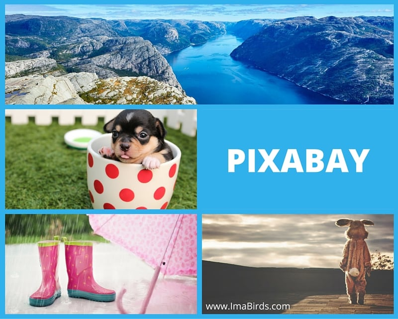 Pixabay - Kostenlose Bilder, Vektoren und Illustrationen