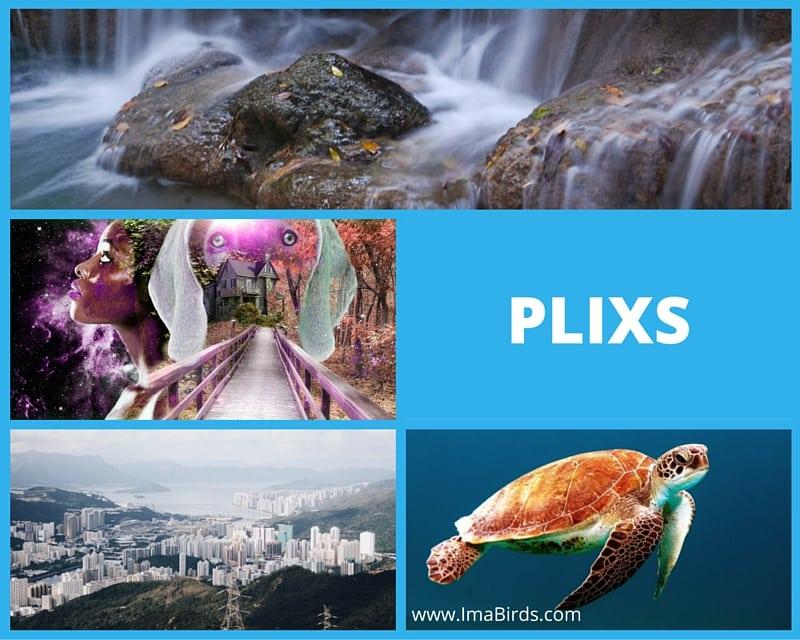 Plixs - freie und kostenlose Bilder