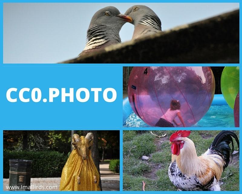 Lizenzfreie kostenlose Bilder von CCO-Photo
