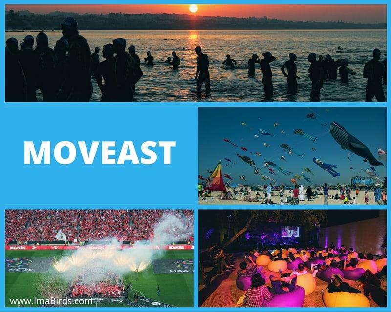 Kostenlose Fotos von Moveast
