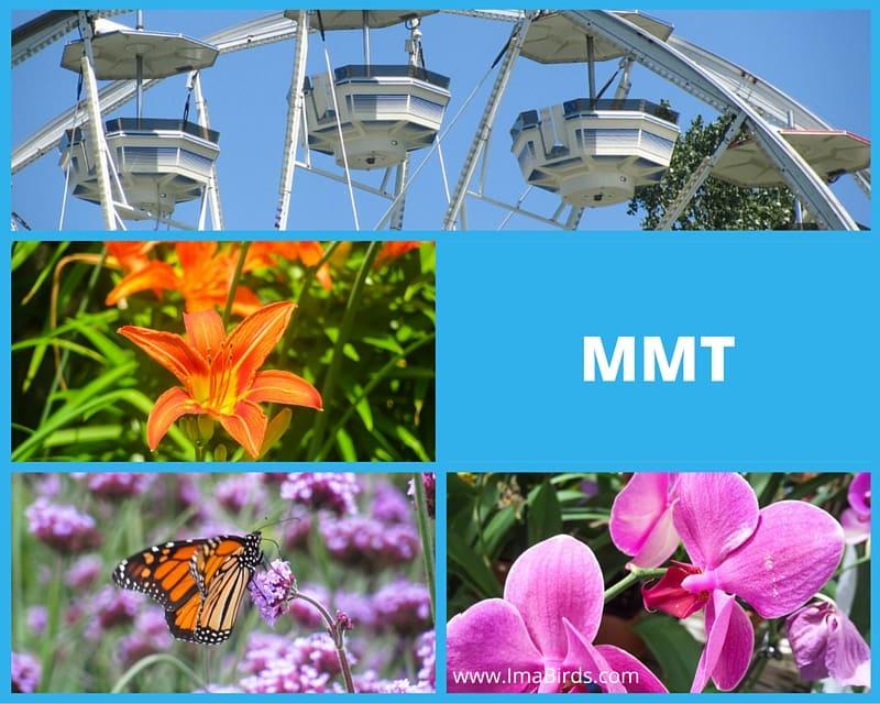 MMT freie Fotos kostenlos runterladen