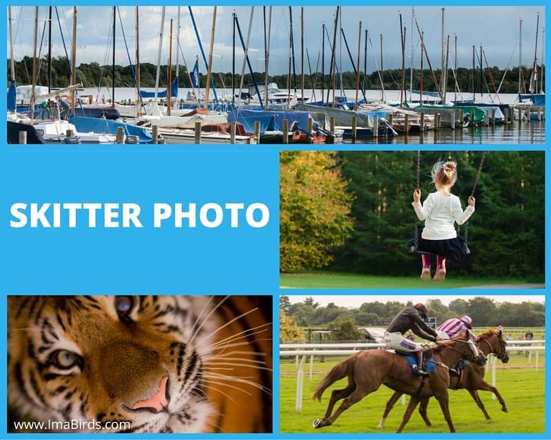 Lizenzfreie kostenlose Bilder bei Skitterphoto