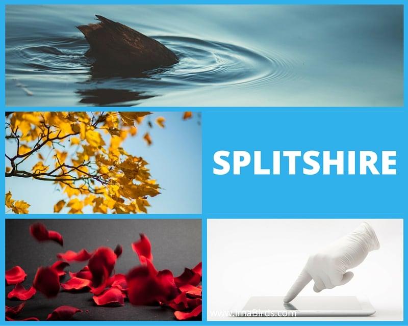 Splitshire - freie kostenlose Fotos runterladen