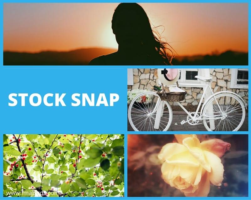 Stock Snap - kostenlose freie Bilder