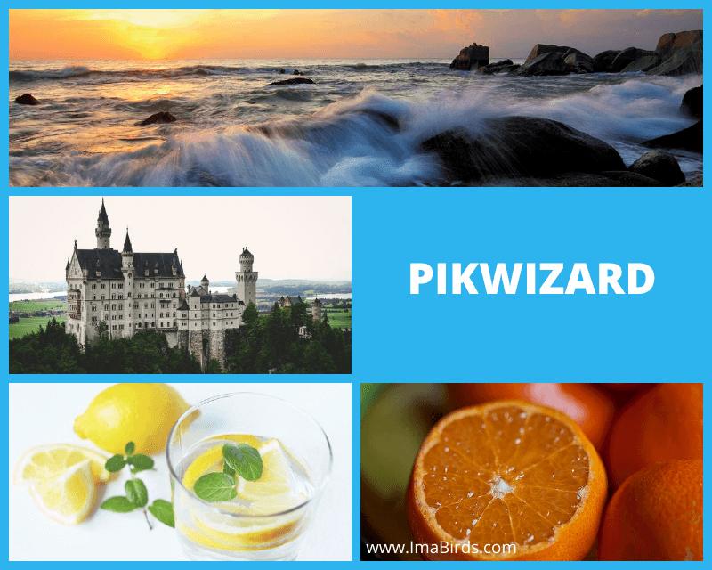 Kostenlose, lizenzfreie Bilder downloaden bei PikWizard